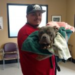 Jesse Sanchez holds his dog Dixie after her hours-long surgery on Spay Day Sacramento 2016.